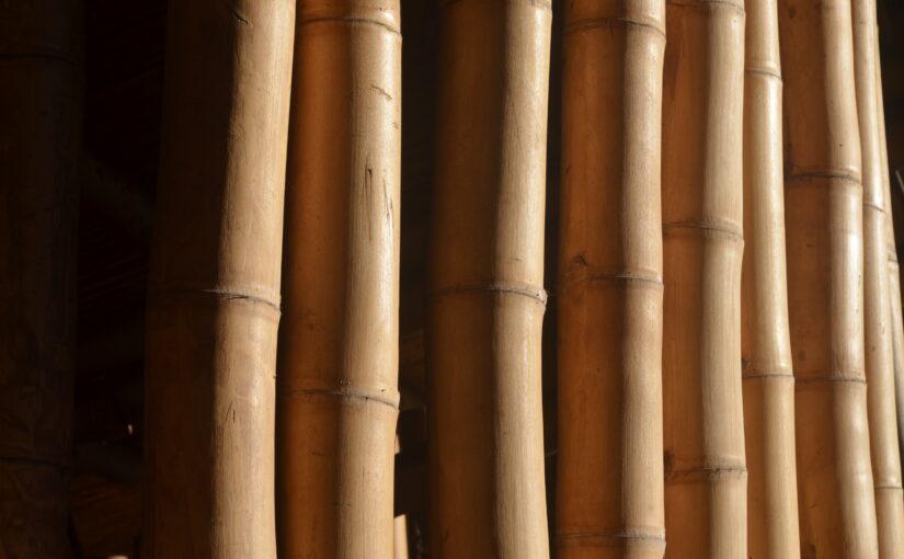 Deutsche Bambustage